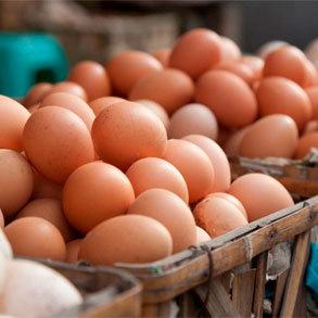 Los huevos en España: consumo y regulaciones