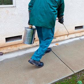Los servicios de Fumigación y control de plagas son clave en hostelería