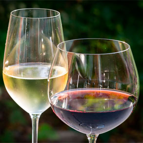 Aprende a recomendar un buen vino blanco