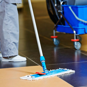 Escgge el limpiador de suelos apropiado