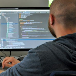 El dilema del software personalizado