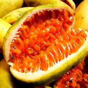 Gran variedad de pulpas de fruta