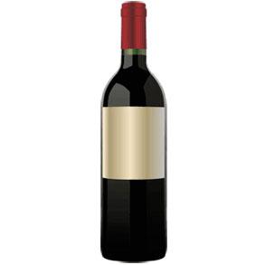 Disfrutar un buen vino tinto en verano