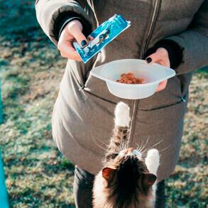 La industria de alimentos para mascotas ante el COVID-19