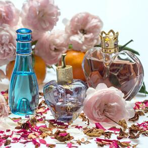¿Cómo conseguir perfumes al por mayor vender en tu negocio?
