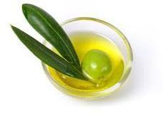 Proveedores: Aceite de Oliva Ecológico en