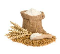 Proveedores de Derivados de Cereales