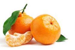 Proveedores de Mandarinas