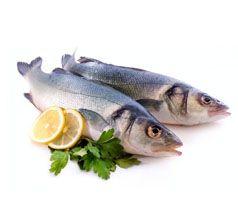 Proveedores de Pescado Fresco