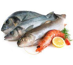 Proveedores de Pescado y Marisco