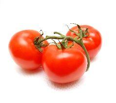 Proveedores de Tomates