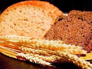 Proveedores de harina. Harina de trigo, de centeno, integral y más