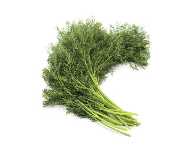 Eneldo. es otra planta aromática muy utilizada para elaborar muchos tipos de salsas