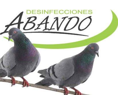 Control de palomas. Control de plagas de aves, palomas