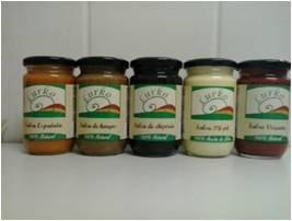 Salsas. Salsas tradicionales de nuestra gastronomía