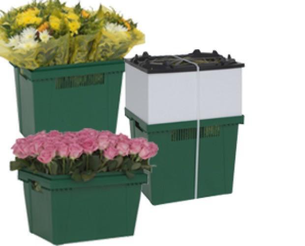 Fundas, conos y cajas para embalaje de f. Fundas, conos y cajas para embalaje de flores