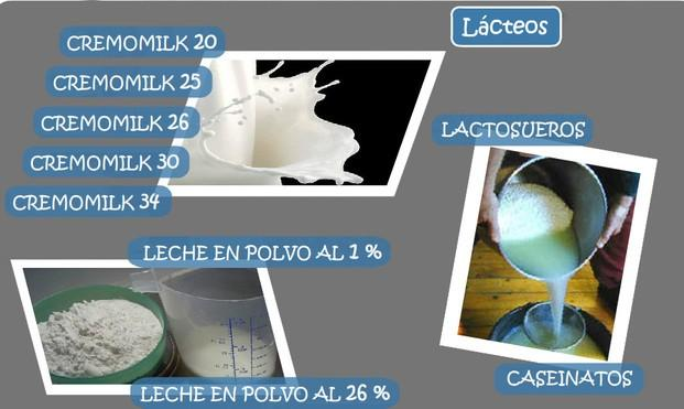 Leche/Lácteos. Leche, leche condensada, leche en polvo