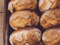 Panes del día