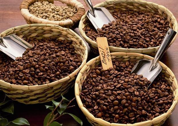 Café. Café en grano de origen seleccionado