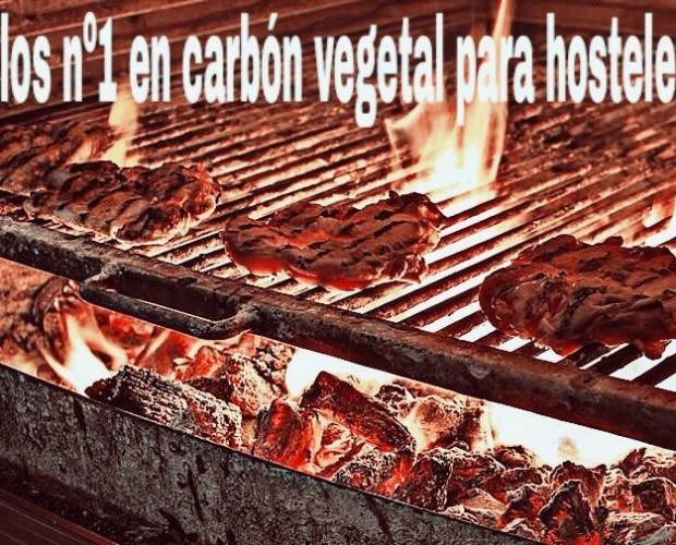 Carbón Vegetal.Alto poder calorífico y durabilidad