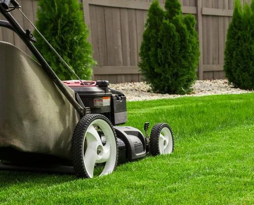 Jardineros.Mantenimiento de jardines. Podas de arbolado. Reposiciones de plantas. Limpieza y desbroce de parcelas. Mantenimiento de piscinas.