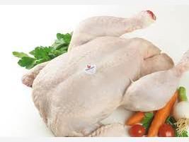 Mayorista de pollo