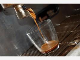 Proveedores El mejor café