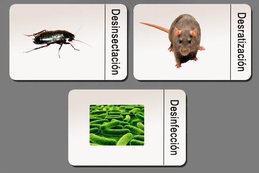 Control de plagas. Desratización, desinsectación, desinfección