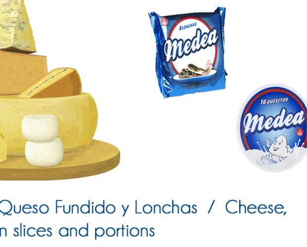 Quesos . Diferentes tipos de queso, en lonchas, porciones y secos.