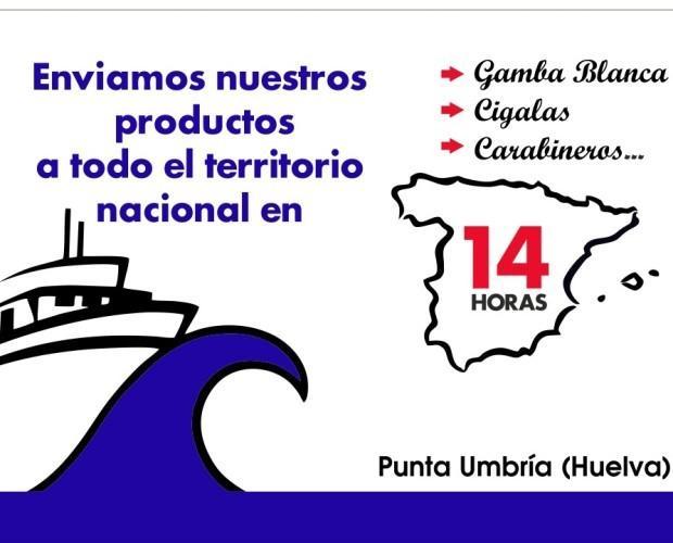 Cubrimos toda España. Entregamos nuestros mariscos en cualquier punto de España