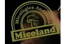 Micoland Biotech