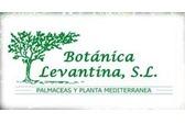 Botánica Levantina