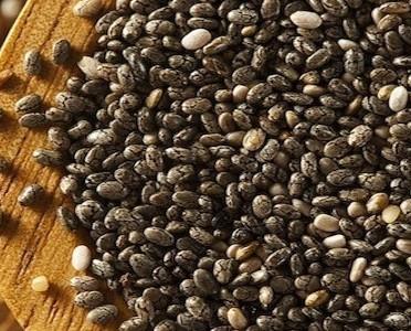 Semillas importancia. semillas de chia