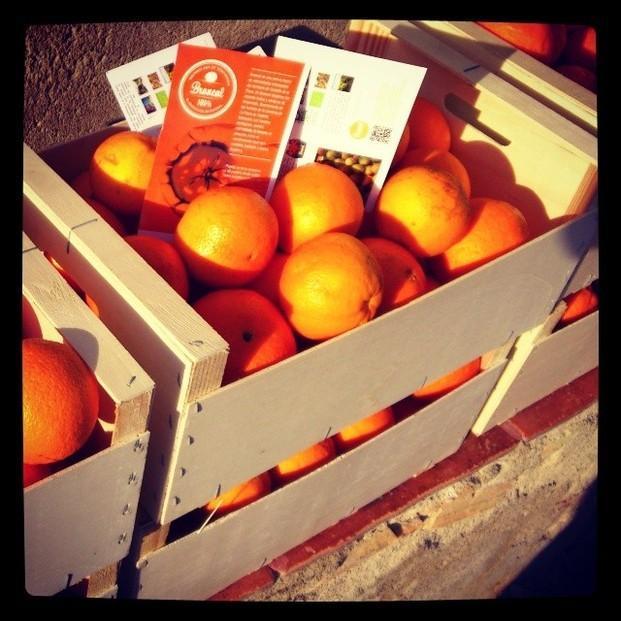 Naranjas Ecológicas.Naranjas ecológicas en caja de madera