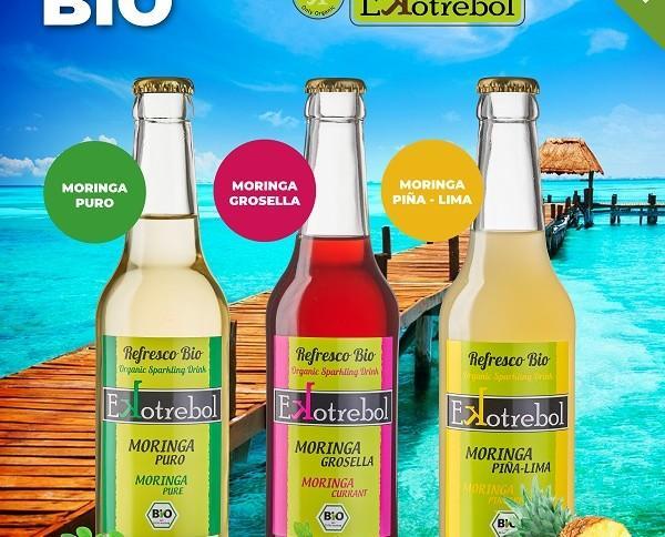 Refresco Moringa. Ecológica y antioxidante