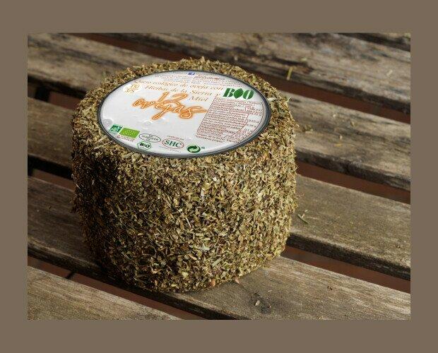 12 ovejas hierbas. Corteza cubierta de una fina capa de hierbas molidas que le confieren ese color