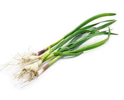 Espinacas.Aroma y sabor único que los hace muy recomendables en revueltos