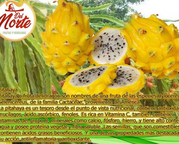 Pitahaya amarilla. Ofrecemos las más deliciosas frutas exóticas
