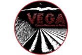 Artesanos de la Vega Cerveza Vega