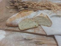 Proveedores Pan de Espelta