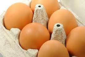 Proveedores de huevos. Huevos XL de más de 73 gramos en docenas