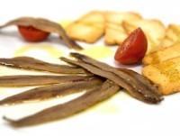 Proveedores Filetes de anchoa