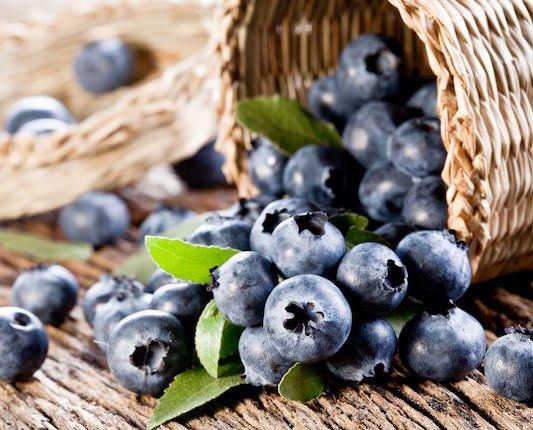 Arándano Azul. Su sabor dulce y ligeramente ácido le conquistarán