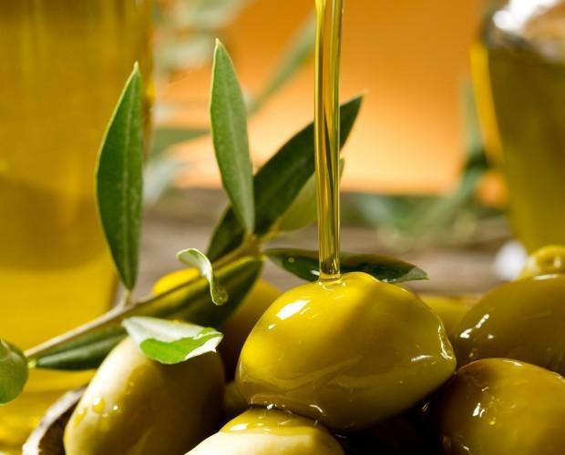 Aceites. Los mejores aceites de primera calidad. Gran variedad