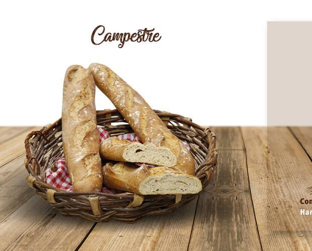 Pan campestre. Harina de trigo, agua, sal y masa madre