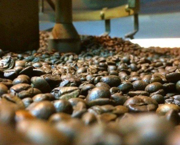 Café en grano. Garantía de calidad
