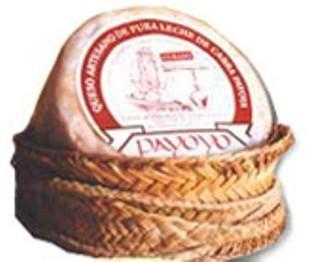 Queso de Oveja. Queso curado de oveja Payoyo