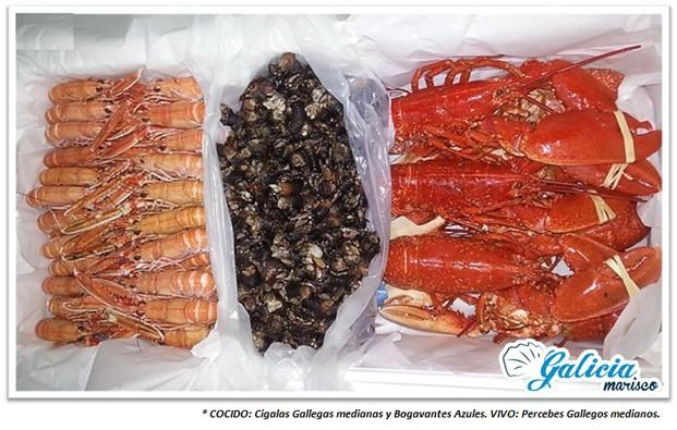 Marisco gallego. Gran variedad de marisco gallego