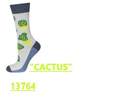 Calcetines de cactus