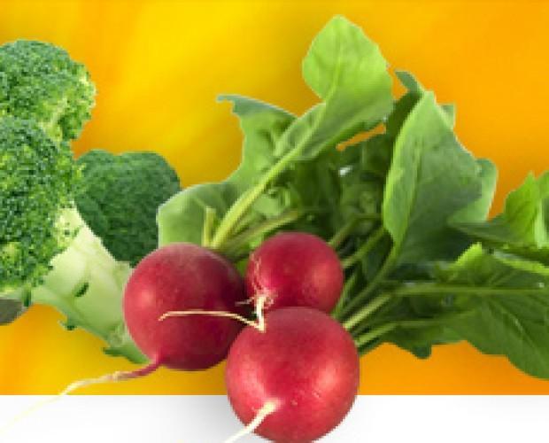 Lechugas.frutas y verduras